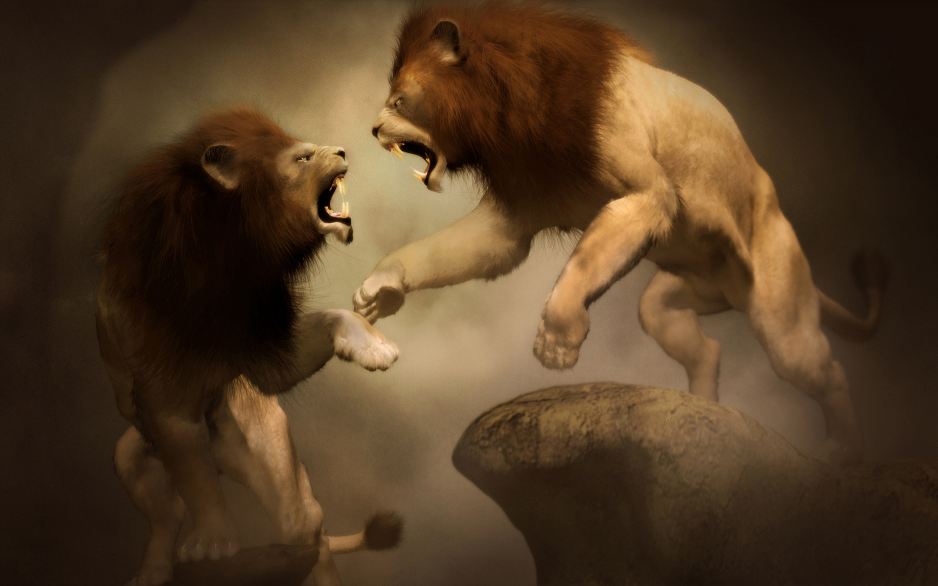 Lions-Fight