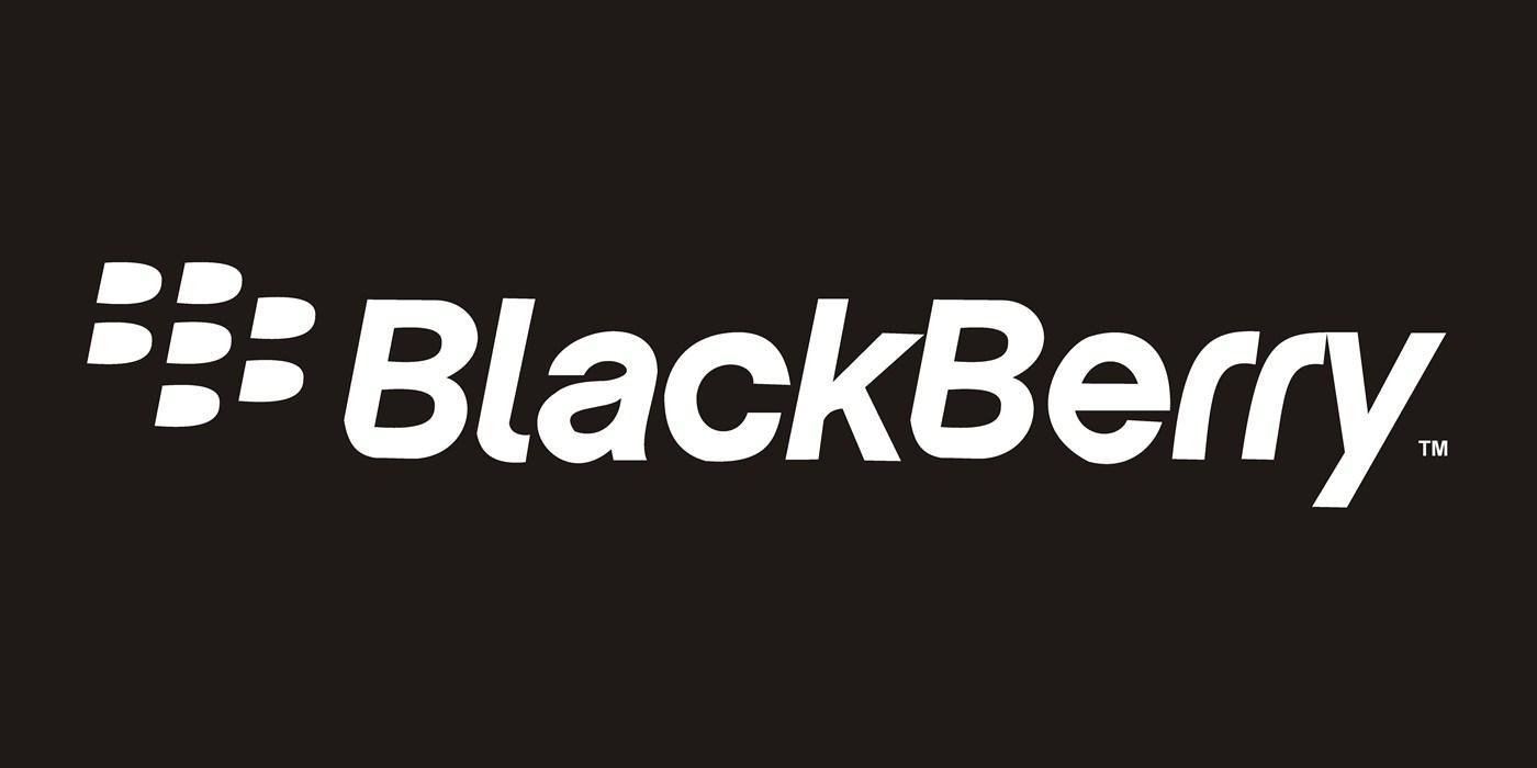 blackberry anti hack tool