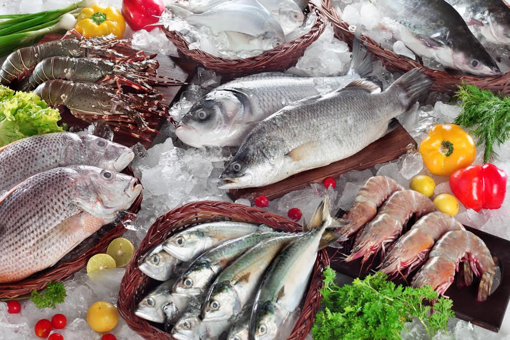 Pescafresh - Breaking Into The Tough Seafood Ecommerce Market ! - TechStory