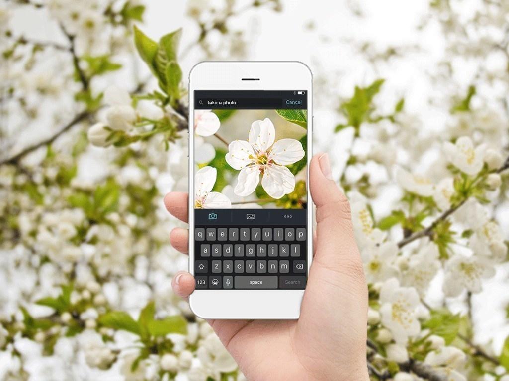 Photo- Shutterstock