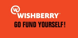 crowdfunding websites india wishberry