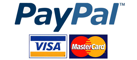 From Enemies to Frenemies ; PayPal, Visa Settle their ...