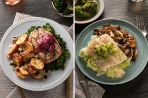 Food Startup