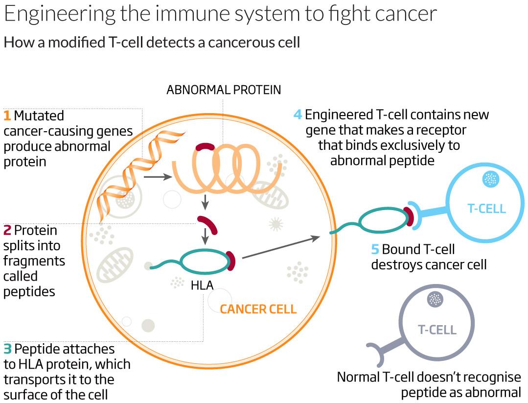 Source: www.newscientist.com