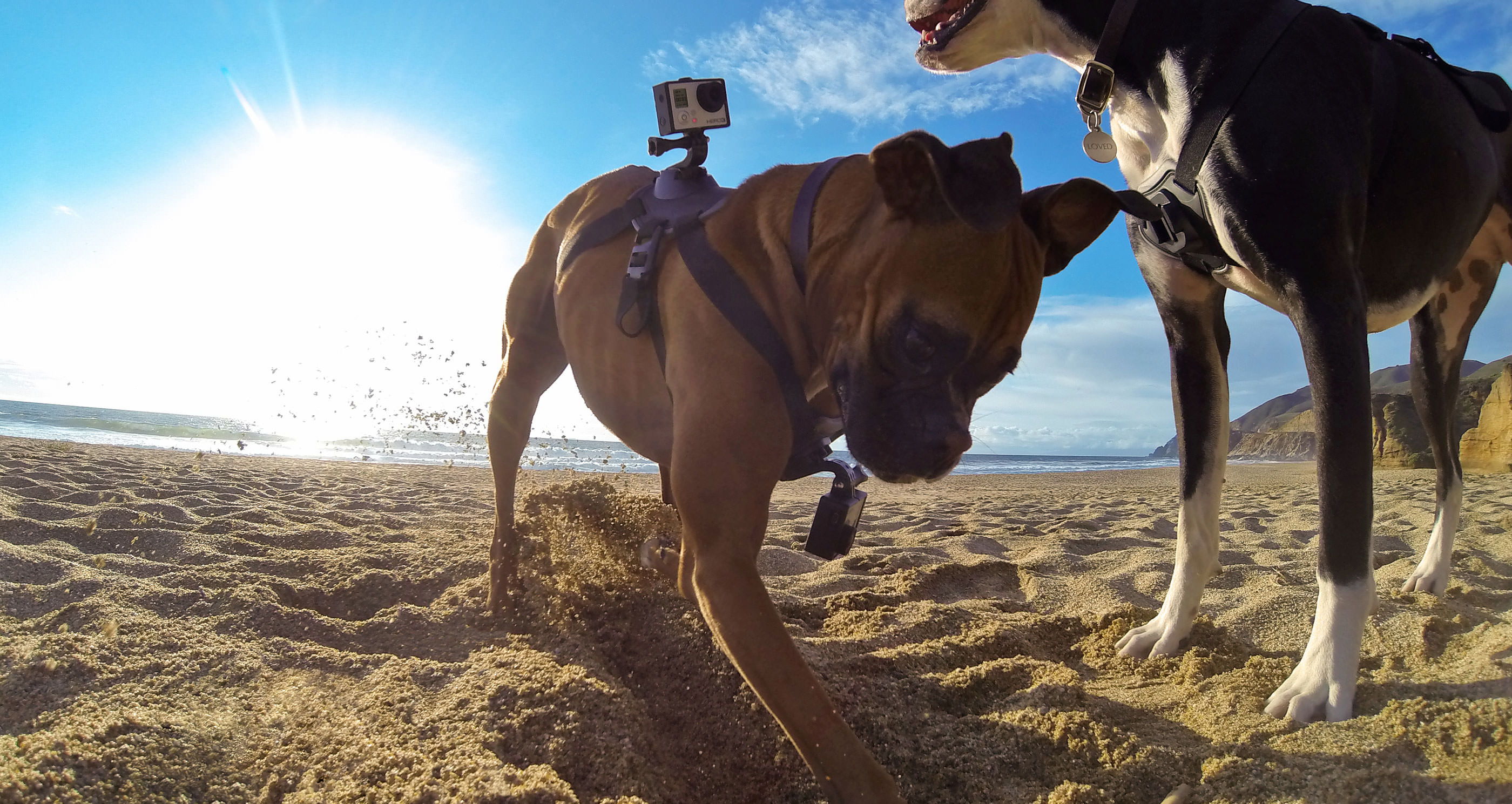 GoPro cuts 270 jobs, stock soars