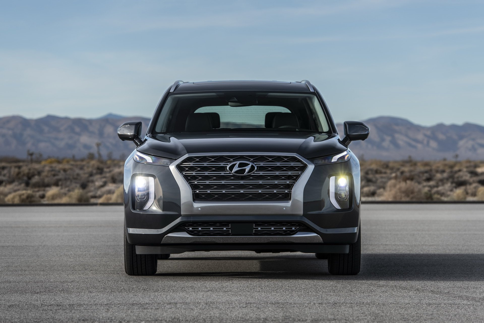 2020 Hyundai Palisade front grille