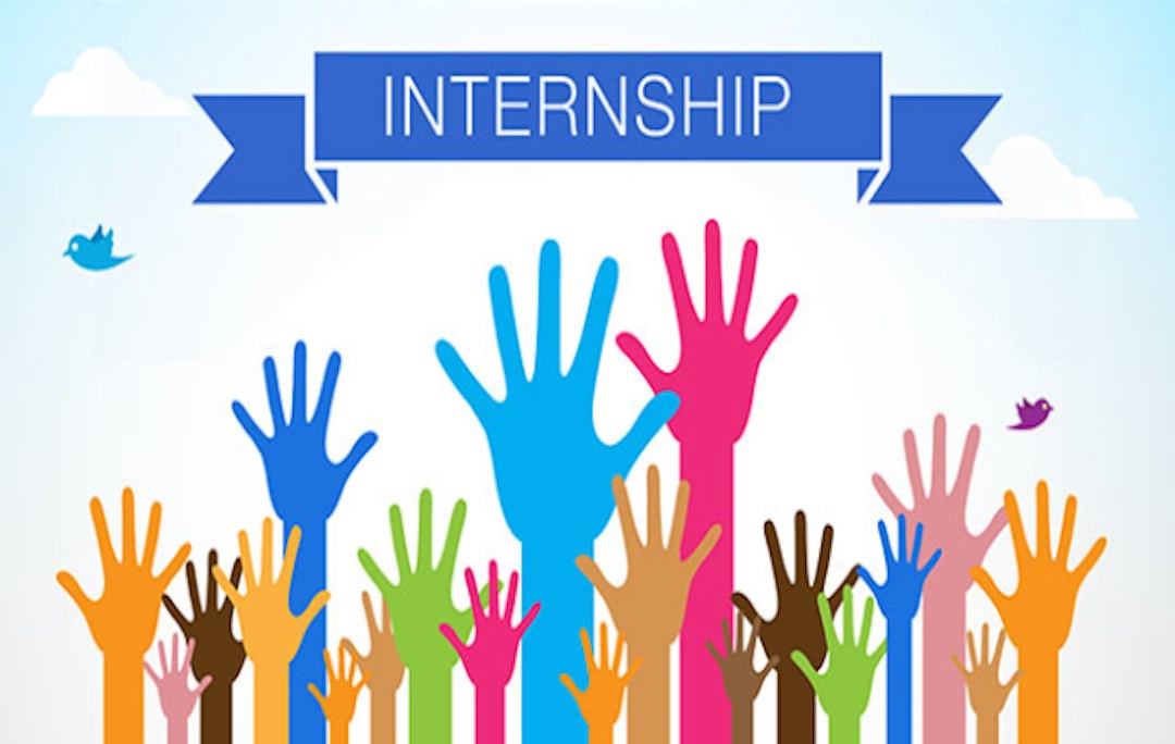 Appealing internship programme for students