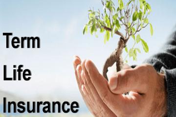 Term-Life-Insurance