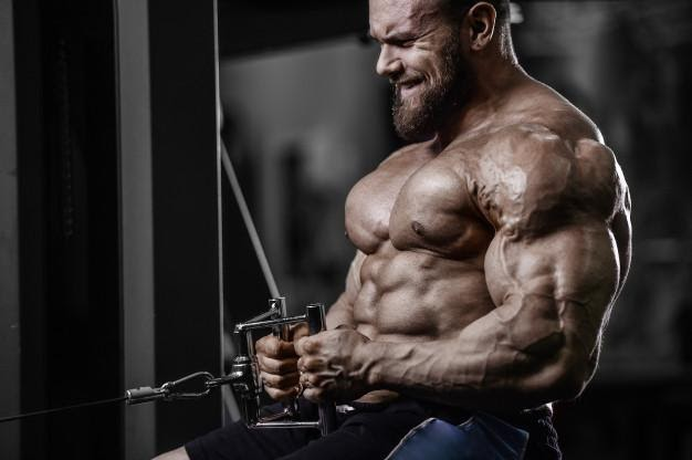 GUIDE TO ENHANCED ATHLETE SARMS