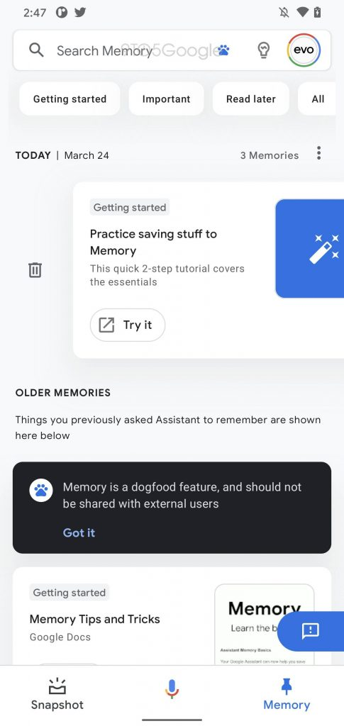 Feed Section - Google Assistant Memroy Feature