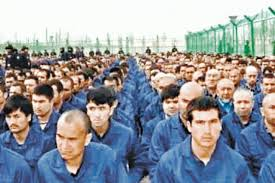 Senator accuses companies of supporting forced labor in Uyghurs