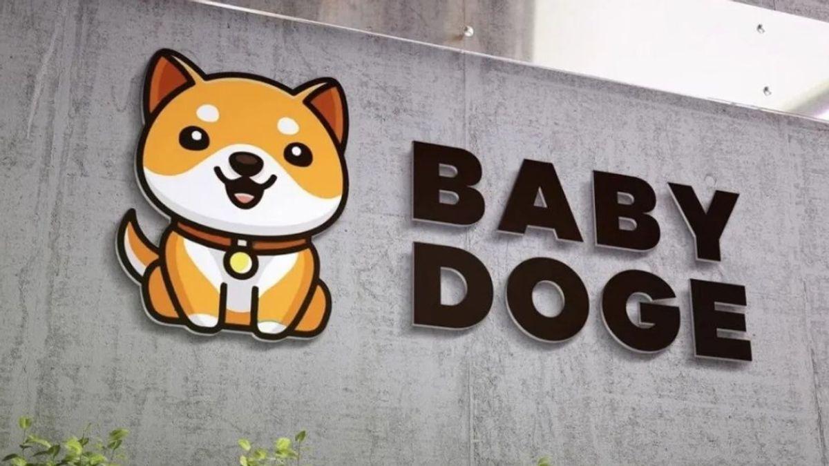 Baby Doge
