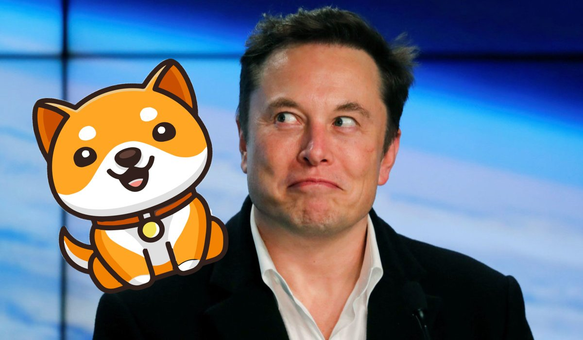 Elon Musk on baby Doge
