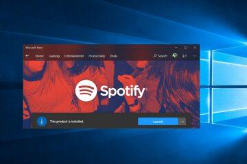 Windows 11 + Spotify