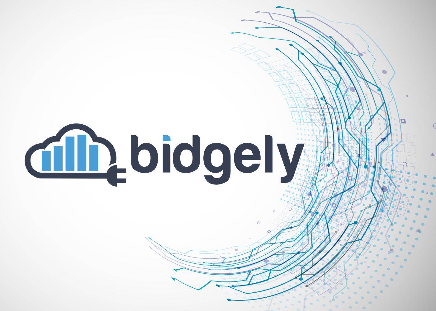 Bidgely logo on Circuit mesh background in circular style