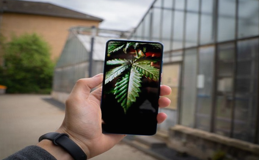 Smartphones which can detect whether the users is high on Marijuana