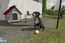 Farming Simulator 22 Animal & Wildlife