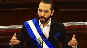 Nayib Bukele says El Salvador will spend $4 million worth of its bitcoin on a pet hospital