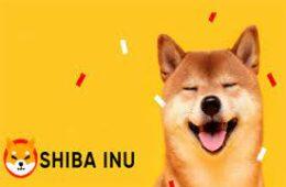 Shiba inu beats Chainlink to top 11 crypto list