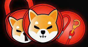Shiba Inu rises 50% to become the 11th most valuable cryptocurrency coin